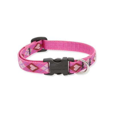 Lupine Pet Puppy Love Adjustable Large Dog Collar