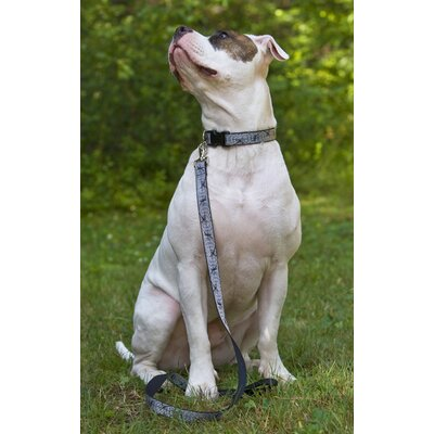 "Lupine Pet Web Master 1"" Adjustable Large Dog Collar"