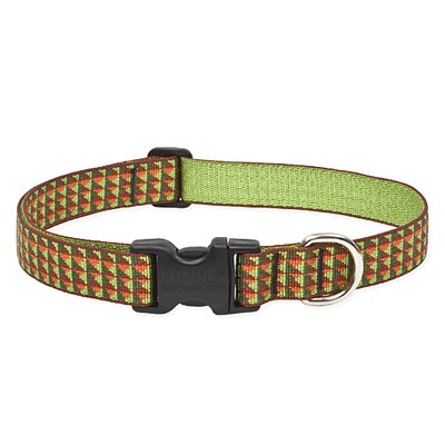 Copper Canyon Adjustable Dog Collar