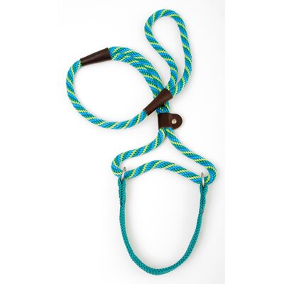 Mendota Twist Big Dog Walker in Seafoam