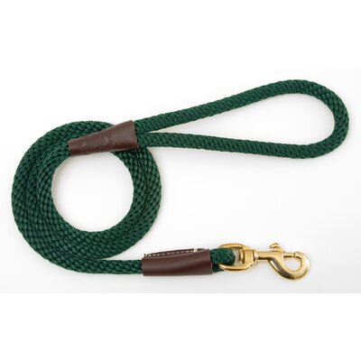 Snap Leash in Green