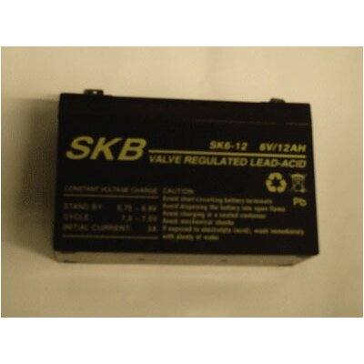 Big Toys Toys Toys Battery 6v 12A Replacement Part