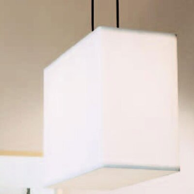 Rex 2 Light Large Pendant