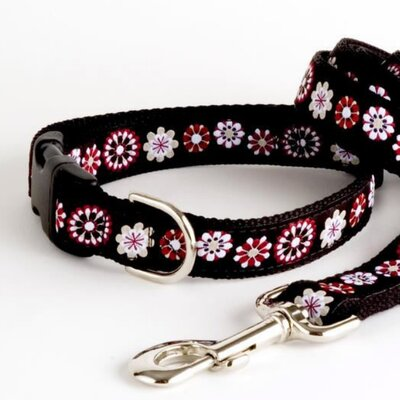 Lola and Foxy Bloom Dog Collar