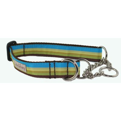 Lola and Foxy Dublin Stripe Martingale Dog Collar