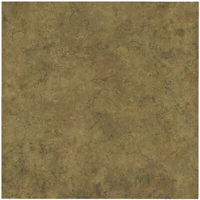 "Shaw Floors La Paz 13"" x 13"" Ceramic Tile in Tierra"