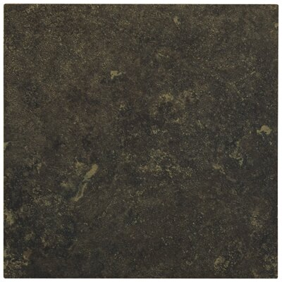 "Shaw Floors Lunar 12"" x 12"" Porcelain Tile in Graphite"