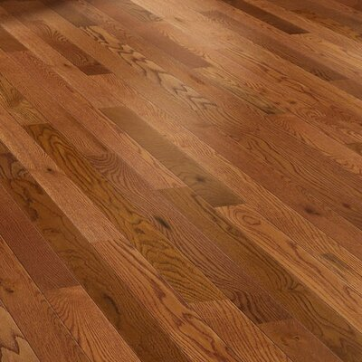 "Shaw Floors Golden Opportunity 3-1/4"" Solid White Oak Flooring in ..."