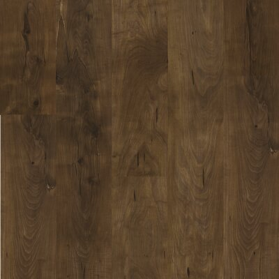 Shaw Floors Natural Values II 6.5mm Pine Laminate in Fairfield