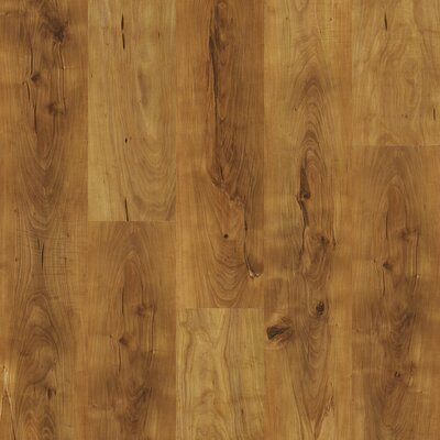 Shaw Floors Natural Values II 6.5mm Pine Laminate in Summerville