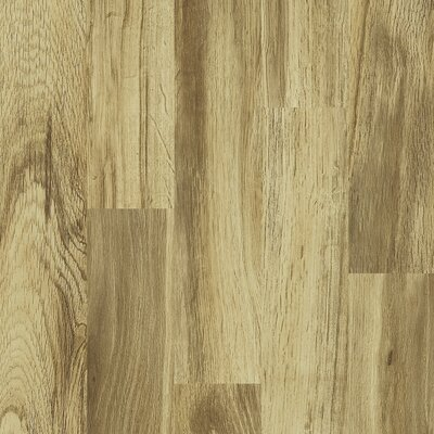 Shaw Floors Ritz 8mm Ash Laminate in Magic Valley
