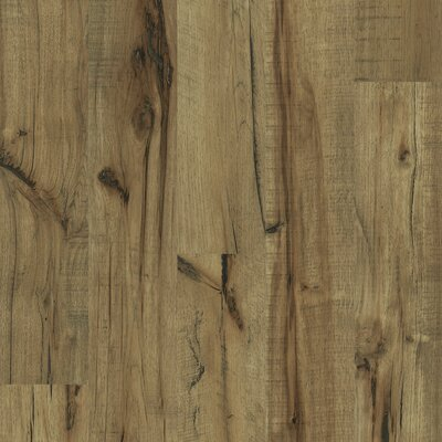 Shaw Floors Timberline 12mm Hickory Laminate in Lumberjack
