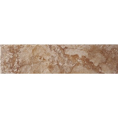 "Shaw Floors Capri 3"" x 12"" Bullnose in Bronze"