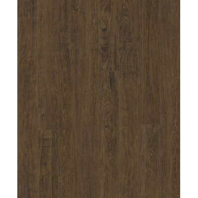 "Shaw Floors Merrimac 3-9/10"" x 36-1/5"" Vinyl Plank in Galley Oak"