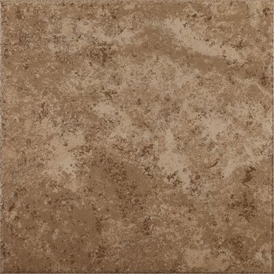 "Shaw Floors Mission Bay 17"" x 17"" Floor Tile in Cliff Point Noce"