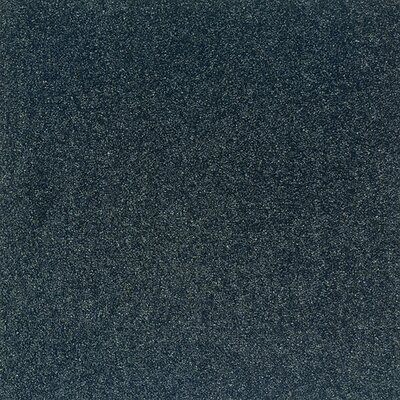 "Milliken Legato Embrace 19.7"" x 19.7"" Carpet Tile in Thunder"