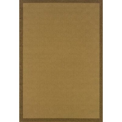 Lanai Beige/Brown Border Rug