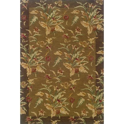 Oriental Weavers Windsor Brown/Multi Rug