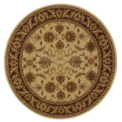 Allure Cream/Brown Rug