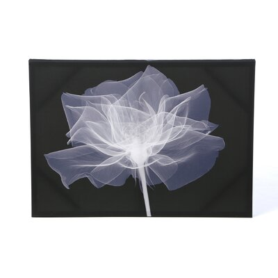 Graham & Brown X-Ray Flower Printed Canvas Art