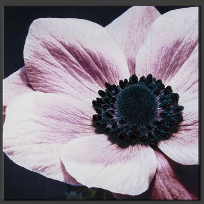 Curio Floral with Glitter Photographic Print on Canvas