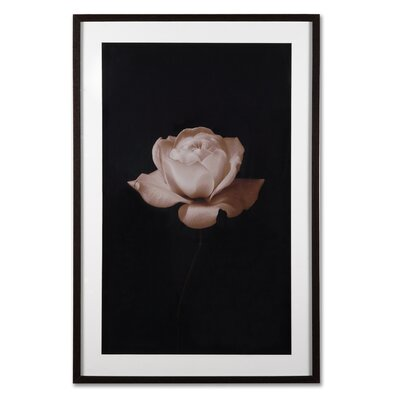 "Graham & Brown Sepia Rose Framed Print Art - 24"" X 35"""