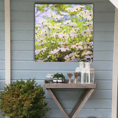 Graham & Brown Daisy Meadow Outdoor Art