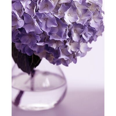 Graham & Brown Hydrangea Vase Canvas