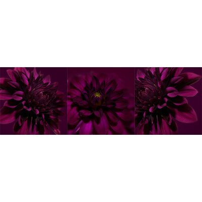 Graham & Brown Dahlia Trio Canvas Blocks (Set of 3)