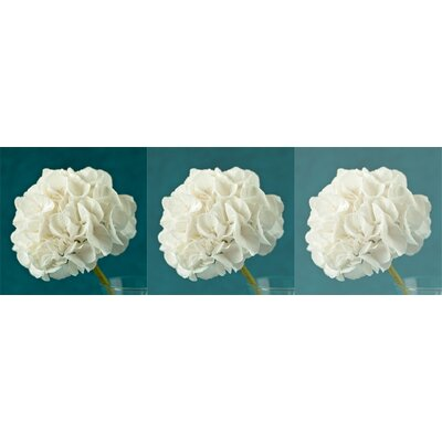 Graham & Brown Hydrangea Trio Canvas (Set of 3)