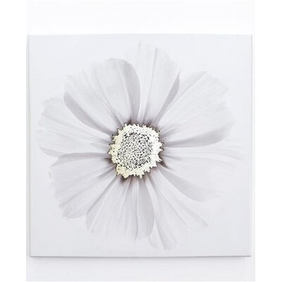 Graham and Brown Metallic X Ray Floral Photographic Print on Canvas