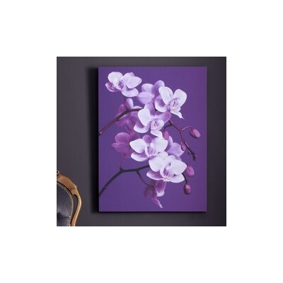 Graham & Brown Orchid Canvas Wall Art
