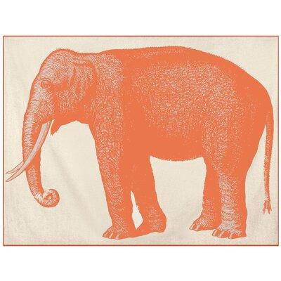 Thomas Paul Baby Elephant Alpaca Throw