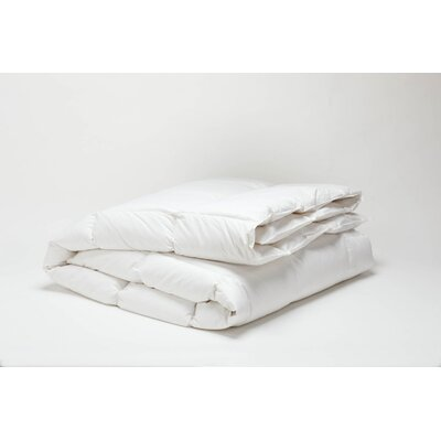Coyuchi Winter Weight Down Duvet Fill
