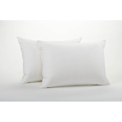 Coyuchi Feather Down Pillow