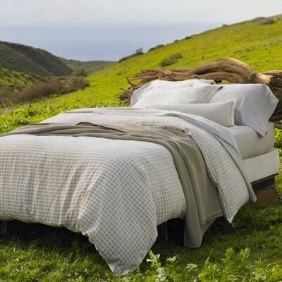 Coyuchi Windy Point Duvet Collection