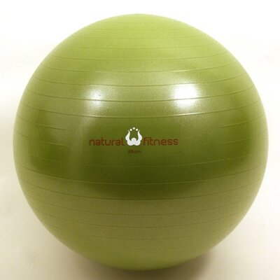 Natural Fitness Burst Resistant Exercise Ball