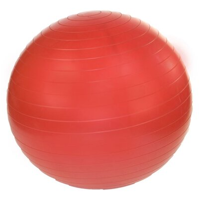 J Fit 18&quot; Professional Exercise Ball