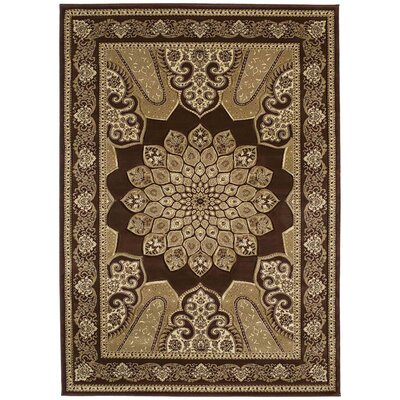 United Weavers of America Contours Demetria Chocolate Rug