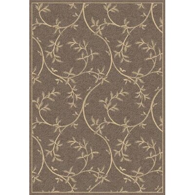 Piazza Banbury Brown Rug