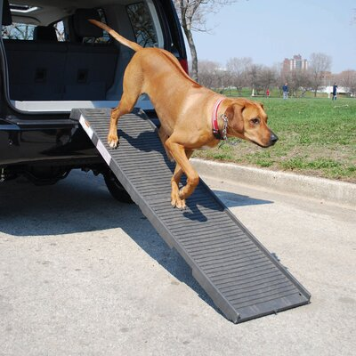 "PetSTEP Folding 70"" Pet Ramp"