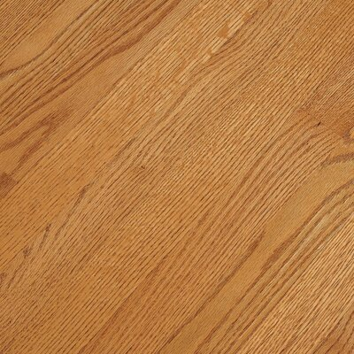 Bruce Flooring SAMPLE - Bristol™ Solid Red Oak in Butterscotch
