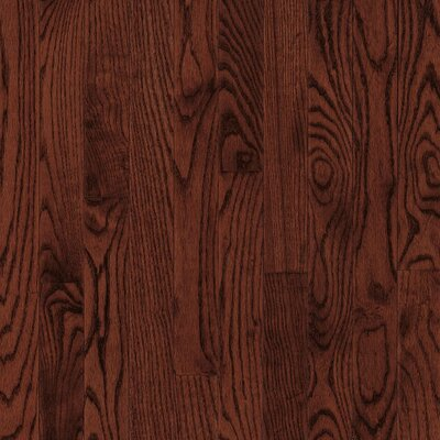 "Bruce Flooring Bristol 3-1/4"" Solid Red / White Oak Flooring in Cherry"