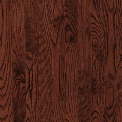 "Bruce Flooring Dundee Plank 3-1/4"" Solid Red / White Oak Flooring in Cherry"