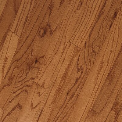"Bruce Flooring Springdale Plank 3"" Engineered Red Oak Flooring in Butterscotch"