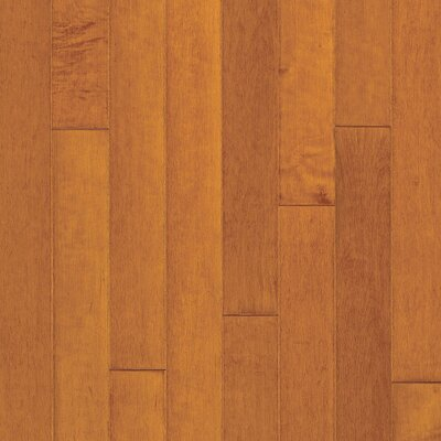 "Bruce Flooring Turlington 3"" Engineered Maple Flooring in Russet / Cinnamon"