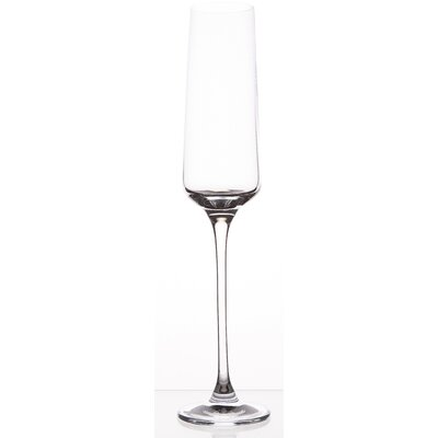 BergHOFF International Champagne Flute