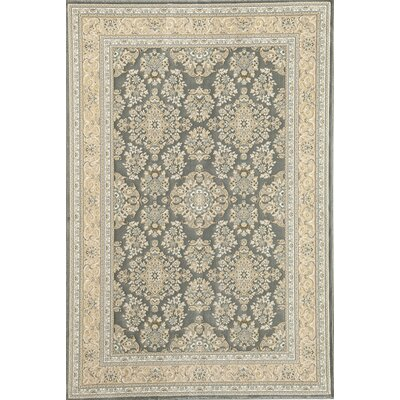 Rugs America Verona Light Blue Sarouk Rug