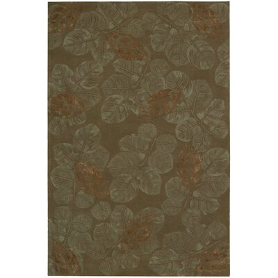 Nourison Julian Brown Rug