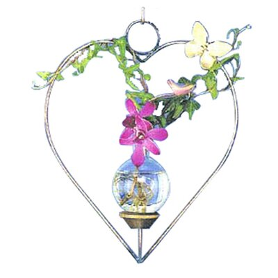 The Brass Butterfly Hanging Heart Rooter
